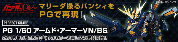 PG 1/60 拡張ユニット アームド・アーマーVN/BS