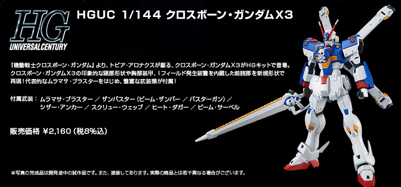 HG 1/144 クロスボーン・ガンダムX3