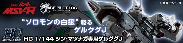 HG 1/144 SHIN MATSUNAGA'S GELGOOG