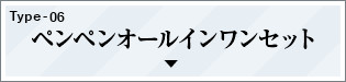 TYPE-06 ペンペンオールインワンセット