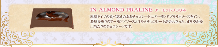 IN ALMOND PRALINE �A�[�����h�v�����l