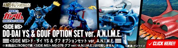 ROBOT魂 〈SIDE MS〉 ド・ダイ YS & グフ オプションセット ver. A.N.I.M.E.