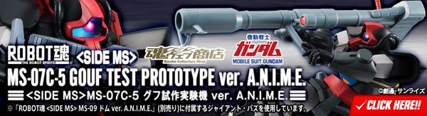 ROBOT魂 <SIDE MS> MS-07C-5 グフ試作実験機 ver. A.N.I.M.E.