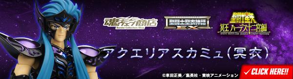 聖闘士聖衣神話EX アクエリアスカミュ(冥衣)