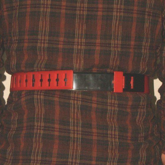 レジェンドライダーシリーズ 変身ベルト 仮面ライダーアギト(別売り)を装着背面
