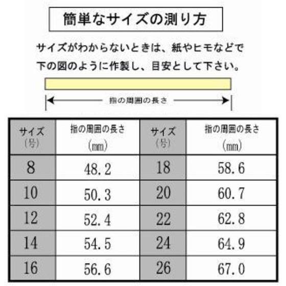 【受注生産】仮面ライダー鎧武 TEAM BARON(チームバロン) 駆紋戒斗 silver925リング