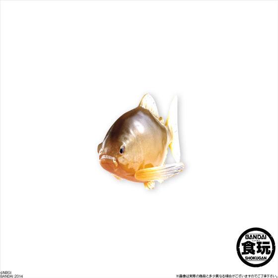 百獣大戦グレートアニマルカイザーゴッド闘獣録3(12個入)