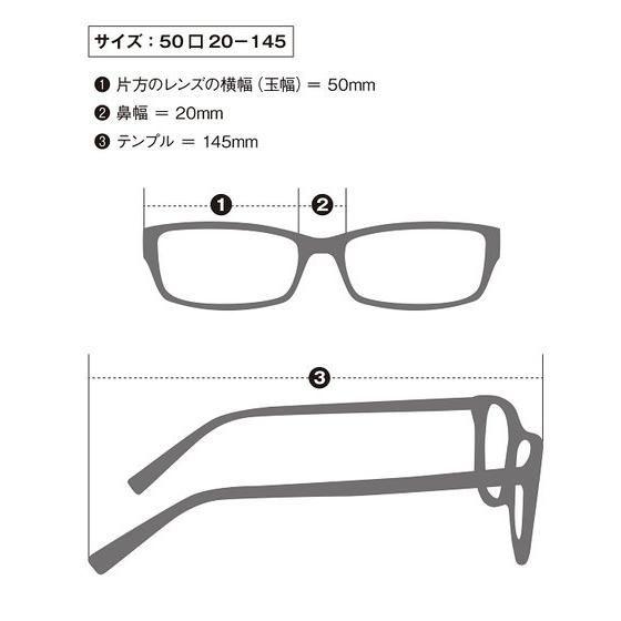 仮面ライダーW WIND SCALE サングラス ブロータイプ