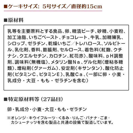 【早期予約キャンペーン】キャラデコクリスマス 宇宙戦隊キュウレンジャー(5号サイズ)