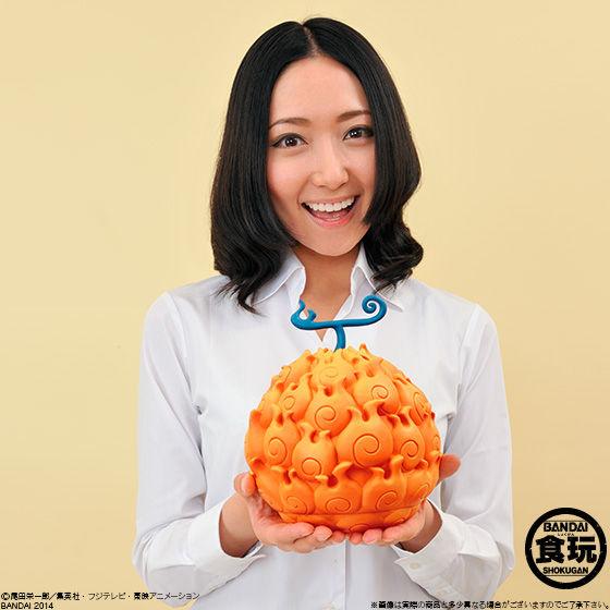 The Devil Fruit メラメラの実
