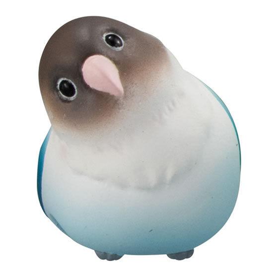 こ ー どの 鳥 さん