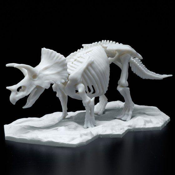 恐竜骨格プラモデル トリケラトプス【2021年9月発送】