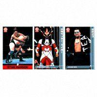 新日本プロレスリングトレーディングカード2002