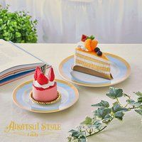 AIKATSU!STYLE for Lady スターライト学園デザインプレート2枚セット