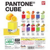 PANTONE CUBE【2次:2021年5月発送】